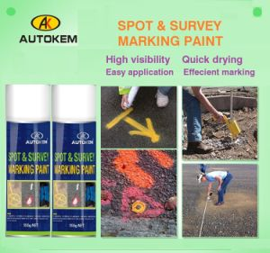 Survey and Spot Marking Paint, Site Marking Paint, Spot Marking Paint, Aerosol Marking Paint pictures & photos