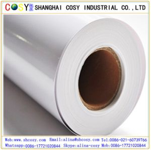 Self Adhesive Cast Coated Glossy Photo Paper pictures & photos