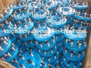 Studded Flange pictures & photos