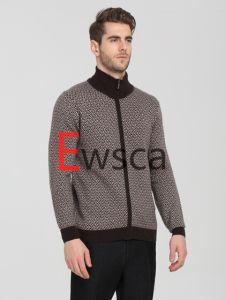 European Style Men′s Intarsia Pure Cashmere Apparel pictures & photos