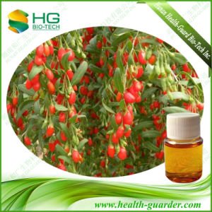 Goji Berry Extract Chinese Wolfberry Extract Oil