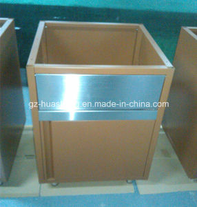Kitchen Cabinet with Metal (HS-053) pictures & photos