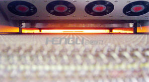 Infrared Fast Firing Furnace of Hsh Series pictures & photos
