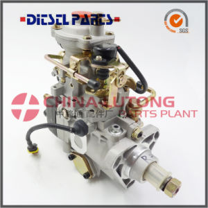 Fuel Injection Pump Nj-Ve4/11e1600r015 for Jmc pictures & photos