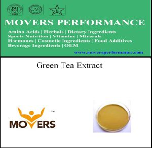 Organic Herbal Extract Green Tea Extract pictures & photos
