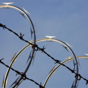 Factory Price Galvanized Razor Barbed Wire Made in China pictures & photos