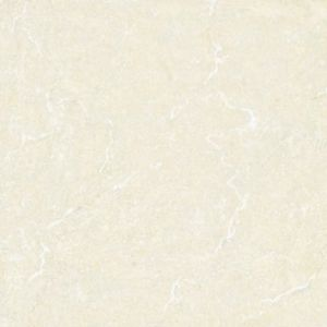 600X600mm Polished Porcelain Floor Tile (P6088N) pictures & photos