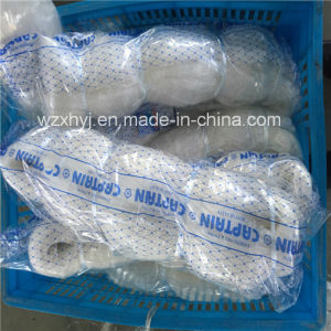 0.37mm Twine Monofilament Fishing Net pictures & photos