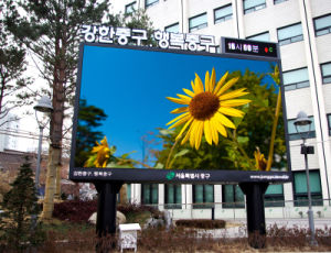 Full Color Outdoor LED Billboard of P5.95, P6.25, P4.81 pictures & photos