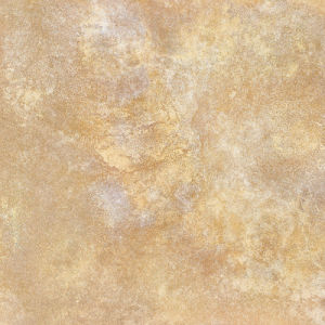 Matt Surface Hot Sales Yellow Color 600X600mm Rustic Tile pictures & photos