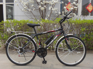 Classic MTB Bike with Rear Carrier (HC-MTB-2603) pictures & photos
