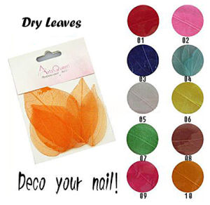 Nail Art Dry Leaf pictures & photos