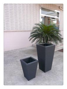 Wicker Planters/Wicker Plant Pots/Rattan Plant Pots pictures & photos
