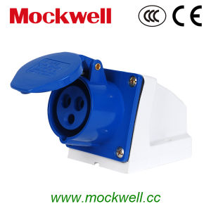 Wl-113 European Standard Industrial Socket pictures & photos