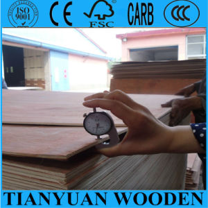 Two Times Hot Press Bintangor Commercial Plywood pictures & photos
