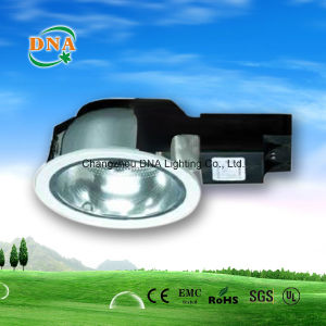 Ceiling Mounted Light pictures & photos