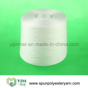 100% Polyester Yarn on Paper Cone (50/3) pictures & photos