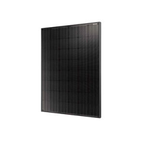 48 Cells Mono Solar Panel 195W-220W pictures & photos