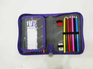 Forzen School Pencil Case for Children pictures & photos