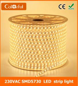 Ce RoHS 120LEDs/M AC220V Flexible SMD5730 LED Strip Light pictures & photos
