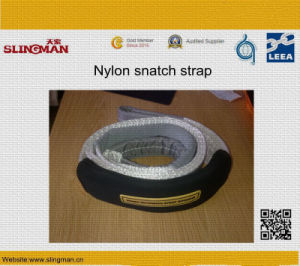 Polyester Tow Straps (TS-T01-01) pictures & photos