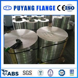 Aluminum 5083 Blind Flange (PY0110) pictures & photos