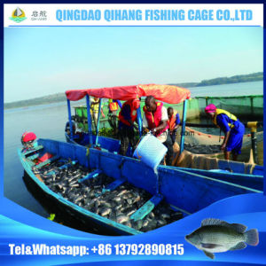 China Hot Selling Popular Fish Farming Cage Frame Floating pictures & photos