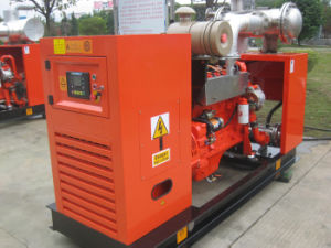 37.5kVA 30kw Biogas Generator Set pictures & photos