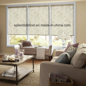 Roller Windows Blinds Fashion Quality Windows Blinds pictures & photos