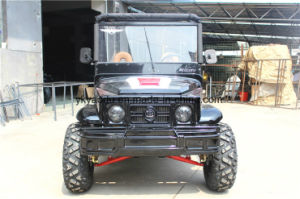 Black, Red, Army Green Electric Beach ATV pictures & photos