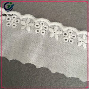 Floral Embroidery 100% Cotton Cloth Lace Wholesale pictures & photos