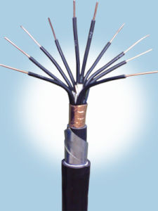XLPE Insulated and PVC Sheathed, Sta Fire Resistantcontrol Cable pictures & photos