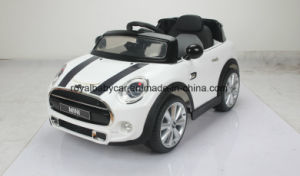 Mini Beachcomber Ride on Car Rje195-1 pictures & photos