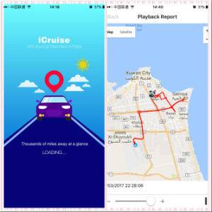 Friendly Easy Operation GPS Tracking System Platform pictures & photos