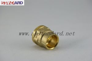 Brass Fittings for Plumbing System pictures & photos