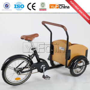 Low Price Three Wheel Tricycle Cargo Bike with Good Quality pictures & photos