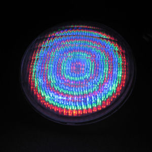 18W LED PAR56 Lamp with 252PCS DIP Chip pictures & photos
