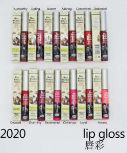 Washami Matte Liquid Lipgloss with Private Label pictures & photos