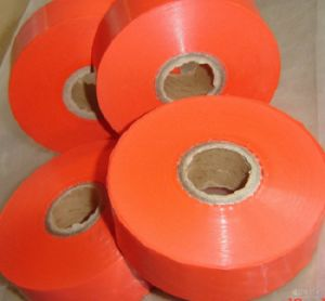 PTFE Thin Film /F46 Film pictures & photos