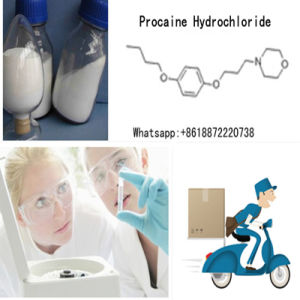 Top Quality Local Anesthetic Drugs Procaine Hydrochloride Powder CAS 51-05-8 pictures & photos