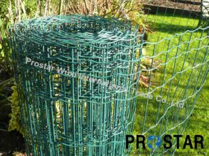 Colorful Surface Chicken Fence for Isolation pictures & photos