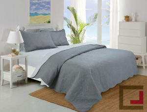 Two Side Color Ultrasonic Quilt Set pictures & photos