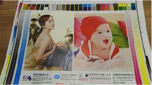 Carton Board Materials Flexo Printing Machine pictures & photos