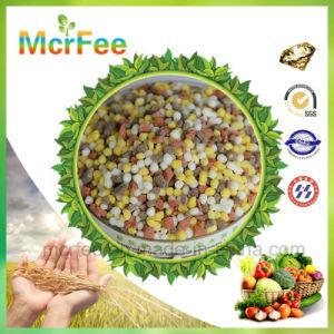 High Nitrogen Formula 30-10-10+Te Soluble Fertilizer for Agriculture pictures & photos