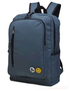 High Quality Student Laptop Backpack Bag, Computer Shoulder Backpack Bag for Hobe, School, Ol pictures & photos