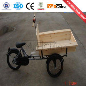 New Design Electric Cargo Family Bike for Sale pictures & photos