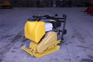 Vibratory Plate Compactor pictures & photos