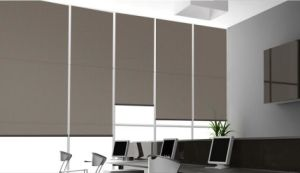 Color Roller Blinds for Home Decoration pictures & photos