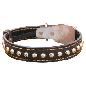 Pet Dog Fashion Leather Lead (C106) pictures & photos