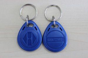 125kHz RFID Keytag/Keyfob UHF RFID Tag 13.56MHz Contactless Smart RFID Keytag pictures & photos